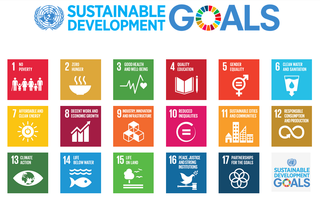 Can Mobile Phones Drive Forward the Sustainable Development Goals?