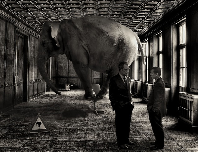 Dominance, Competition & DFC: The Elephant in the Room